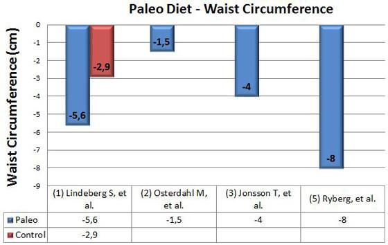waist circumference chart