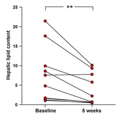 graf som viser vægttab med paleo kost