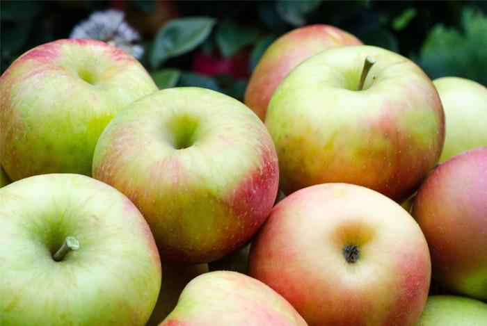 røde æbler