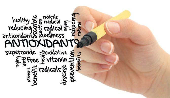 antioxidanter fra blåbær busk