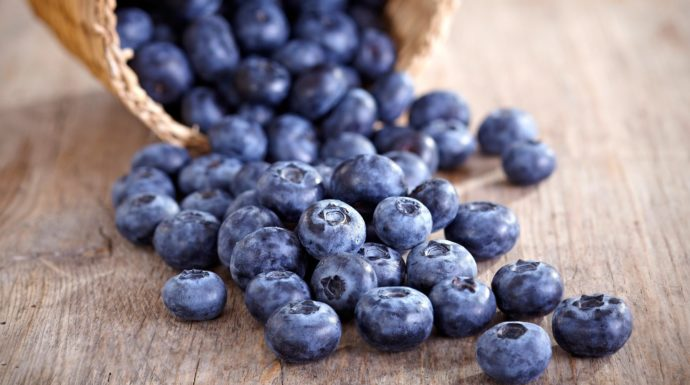 kurv med sunde blåbær du kan lave pandekager af