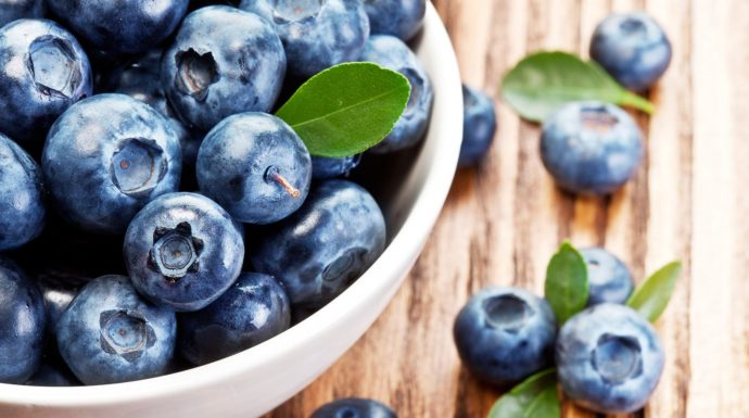 skål fyldt med blåbær til muffins