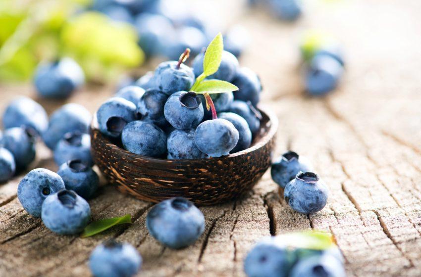 friske vilde blåbær