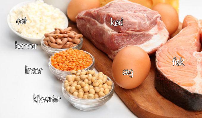 proteiner til slankekuren kød og fisk