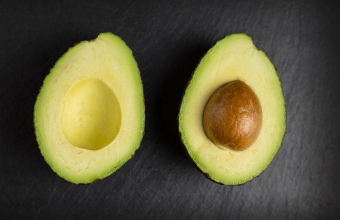 avocado træ